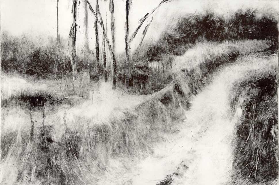 Kyle Hobratschk - Fort Burgwin Nature Trail