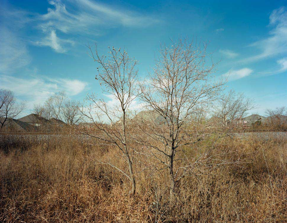 Luther Smith - Off Highway 360 Watauga, Texas