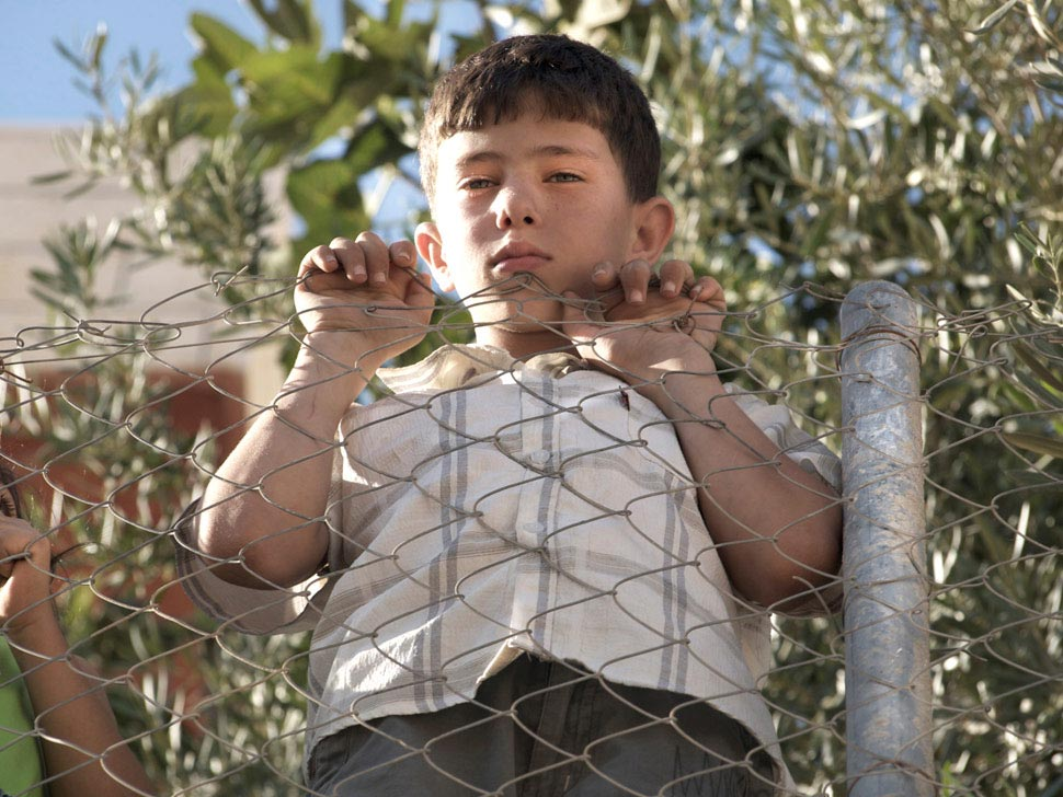 Kamal Wyatt - Looking over the fence