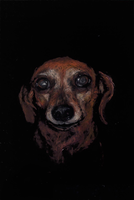 Raychael Stine - Black Portrait