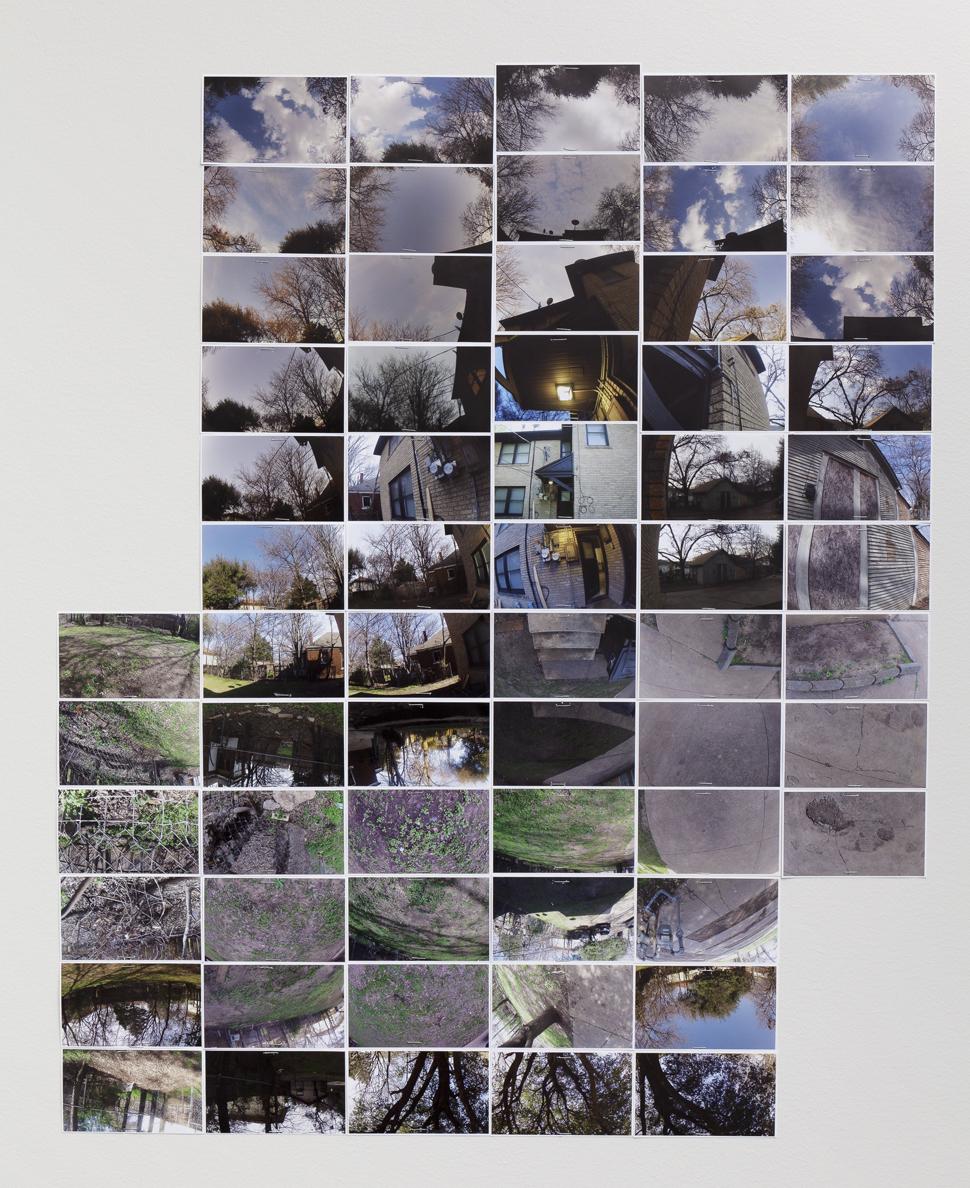 Lizzy Hicks  - Backyard Study #2