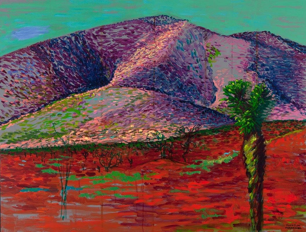 Mary Clay Hernandez - Red Desert/Desierto Rojo (Saltillo to Matehuala)