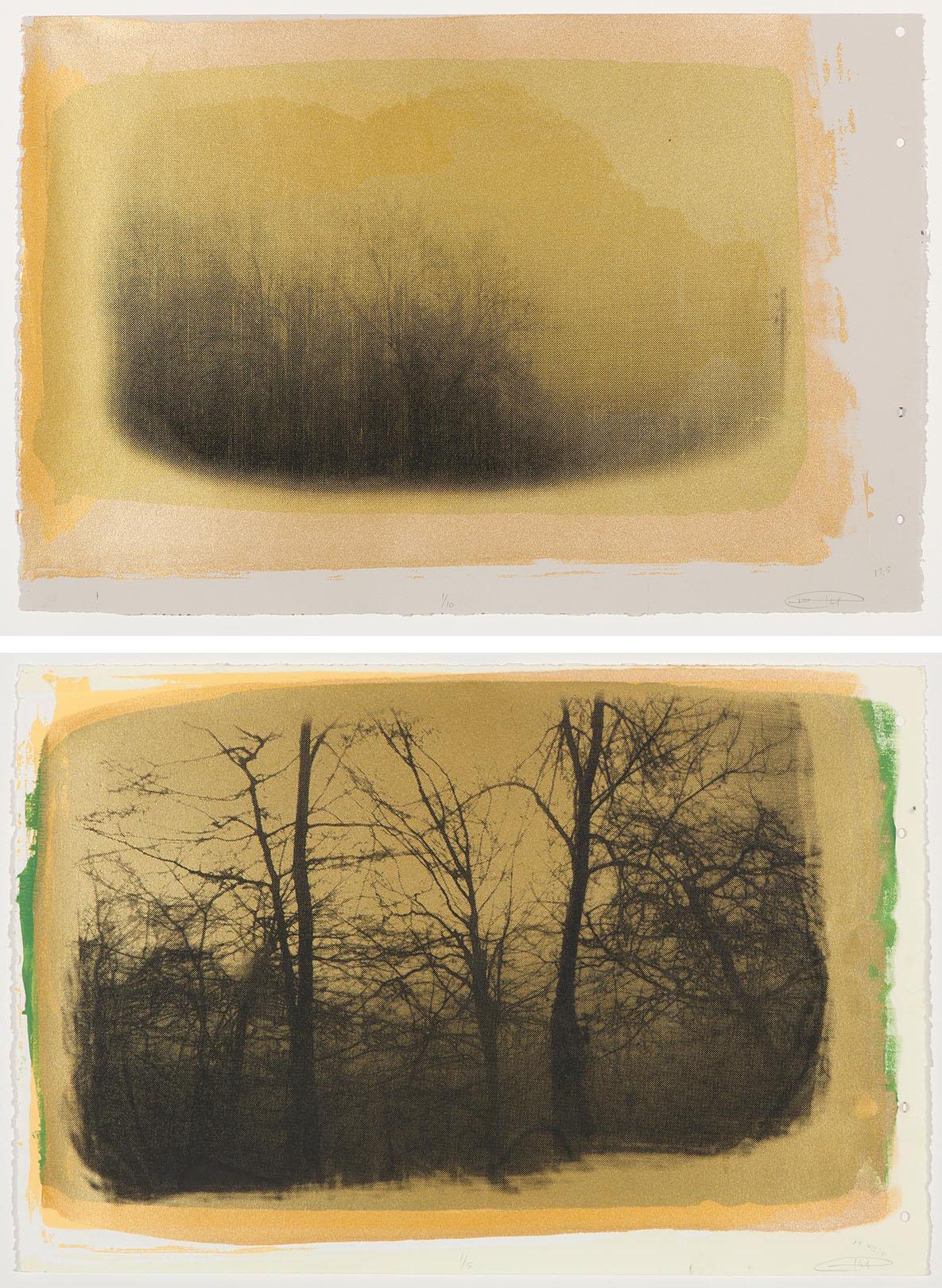 Evan Rottet - Bruma Winter