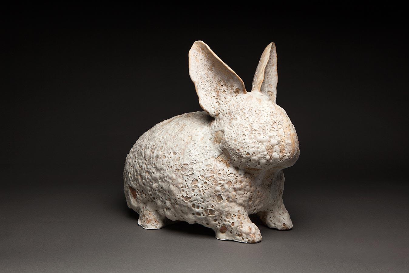 Sydney Williams  - Barnicle Bunny