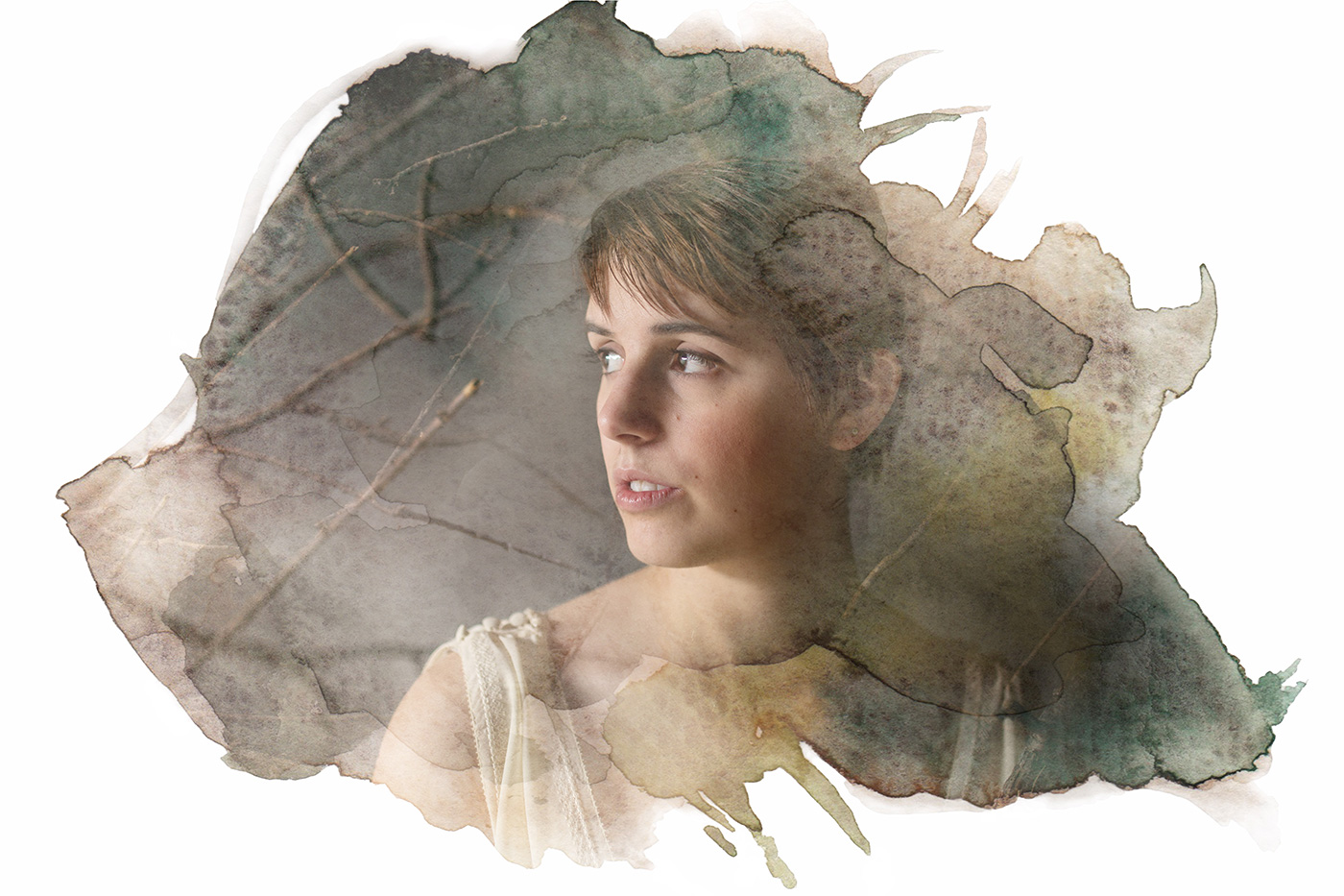 Emily Bailey - Woodland Reverie