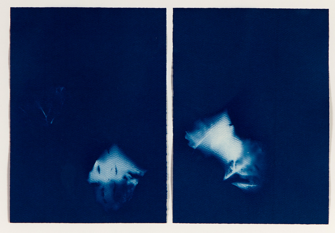 Melissa Tran - Apparitions (diptych)