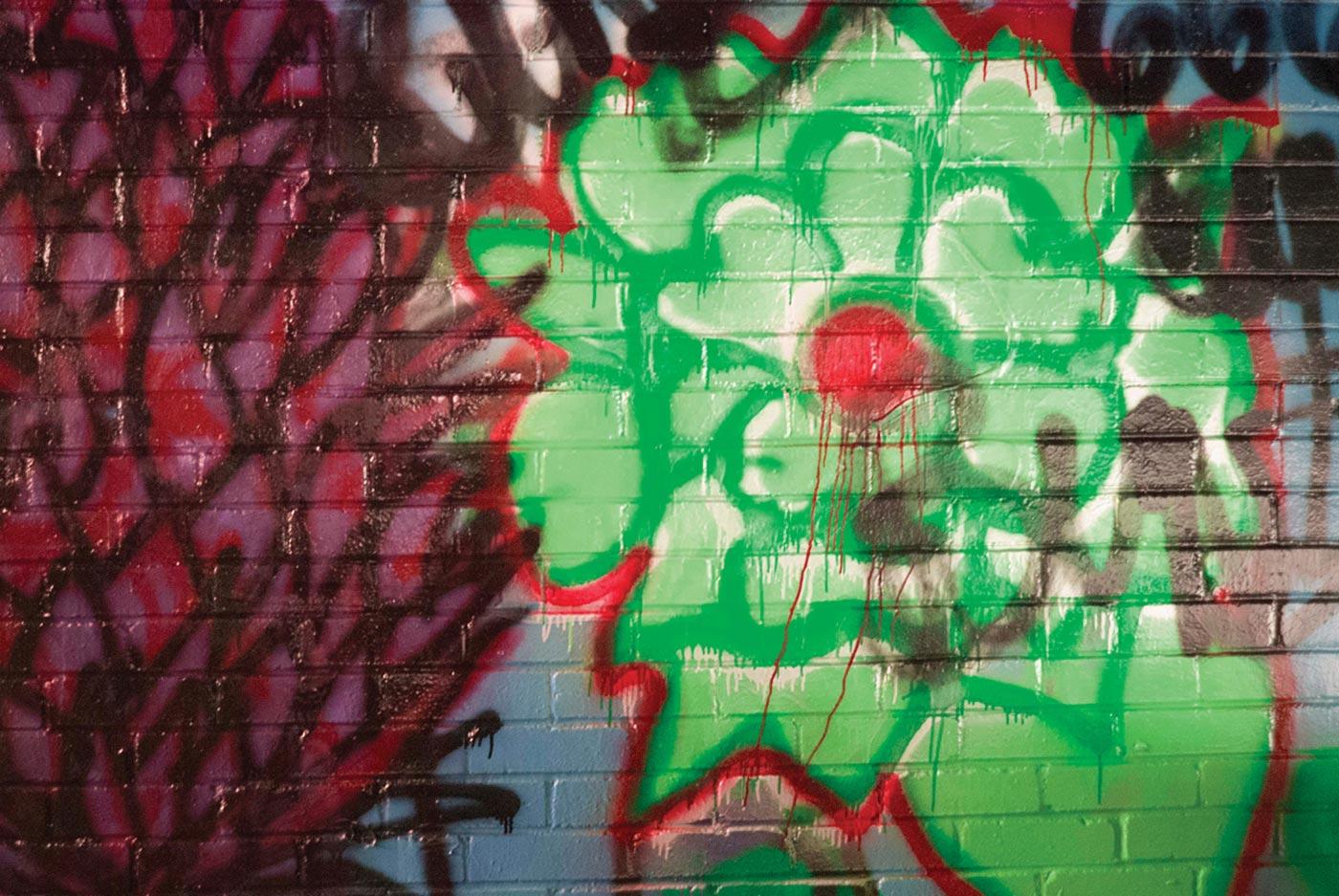Samantha C. Reader  - Bleeding Green Flower