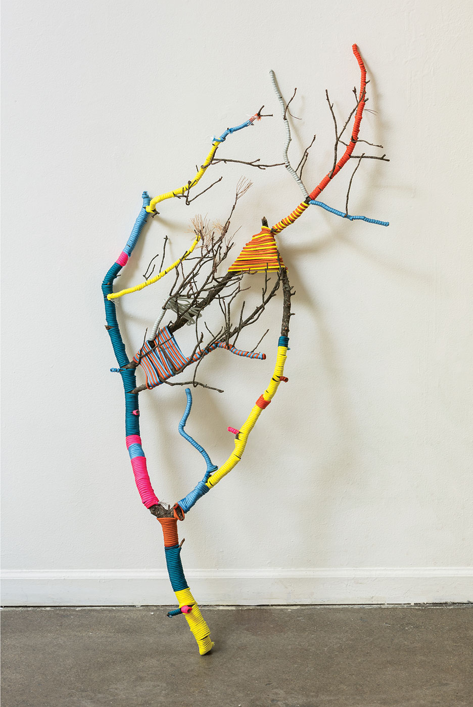Lu Liu - Wrapping Branch