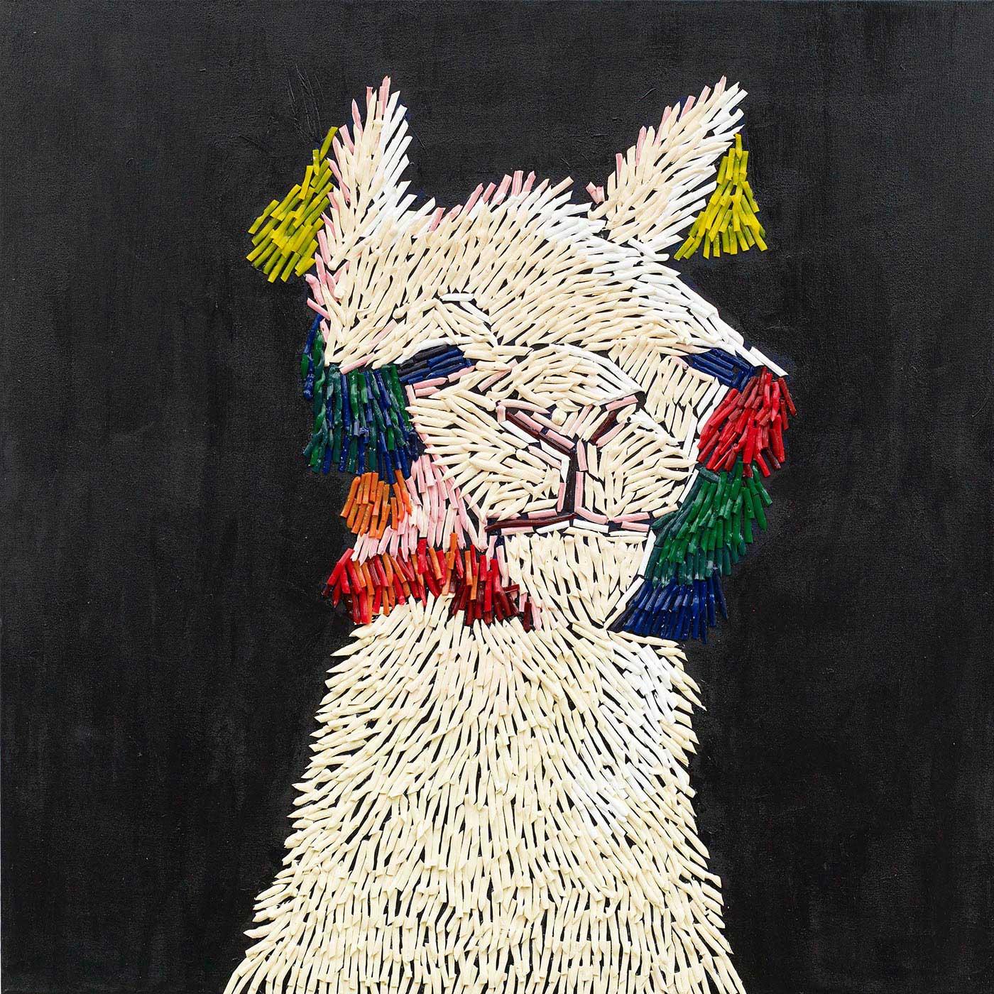 Camila M Wong B.  - Llama