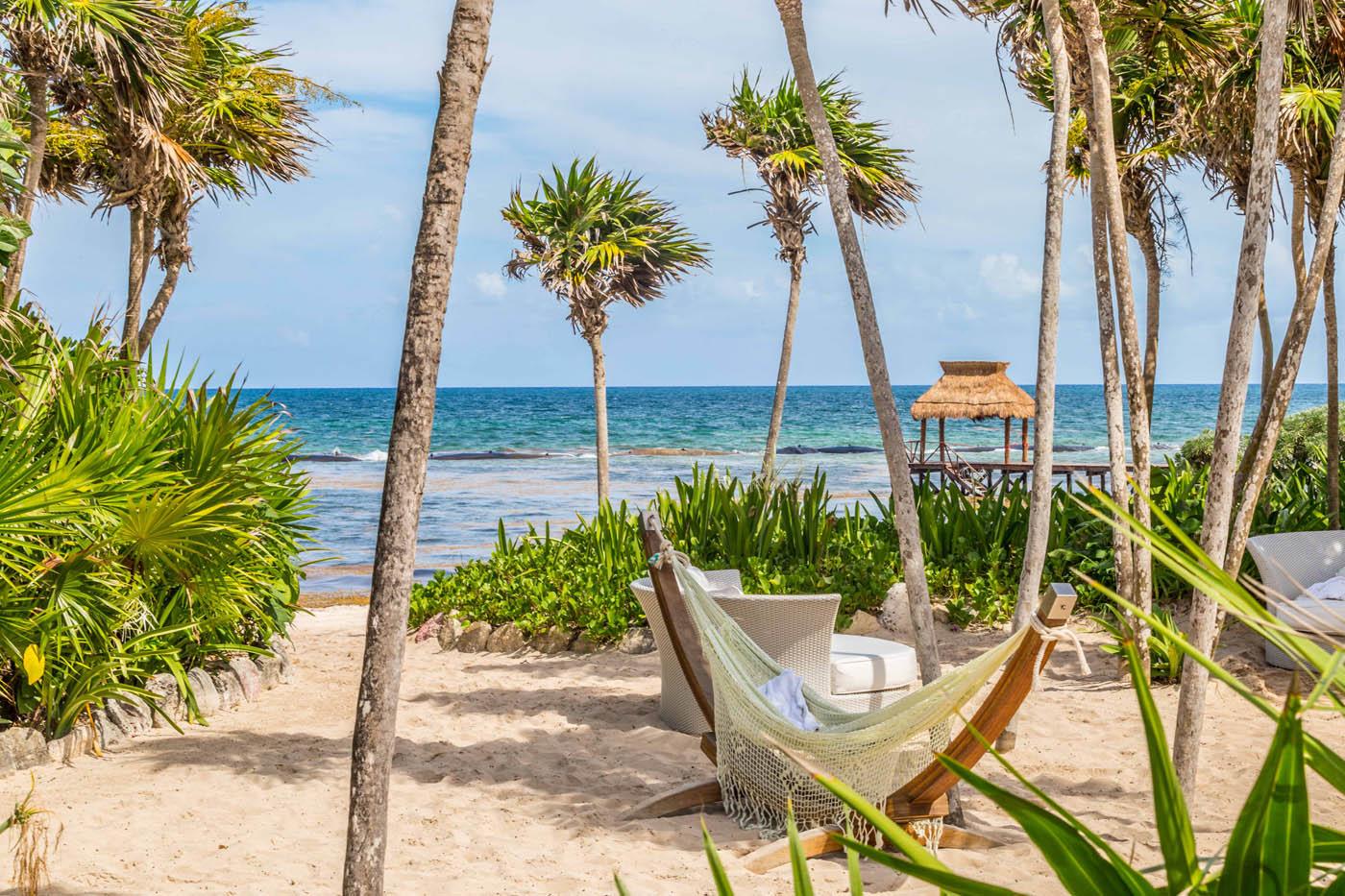 Christopher P. Coyne - Beach Solitude