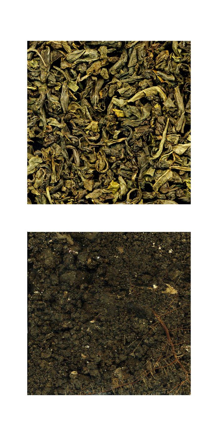 Sally J. Kim - Dirty Tea