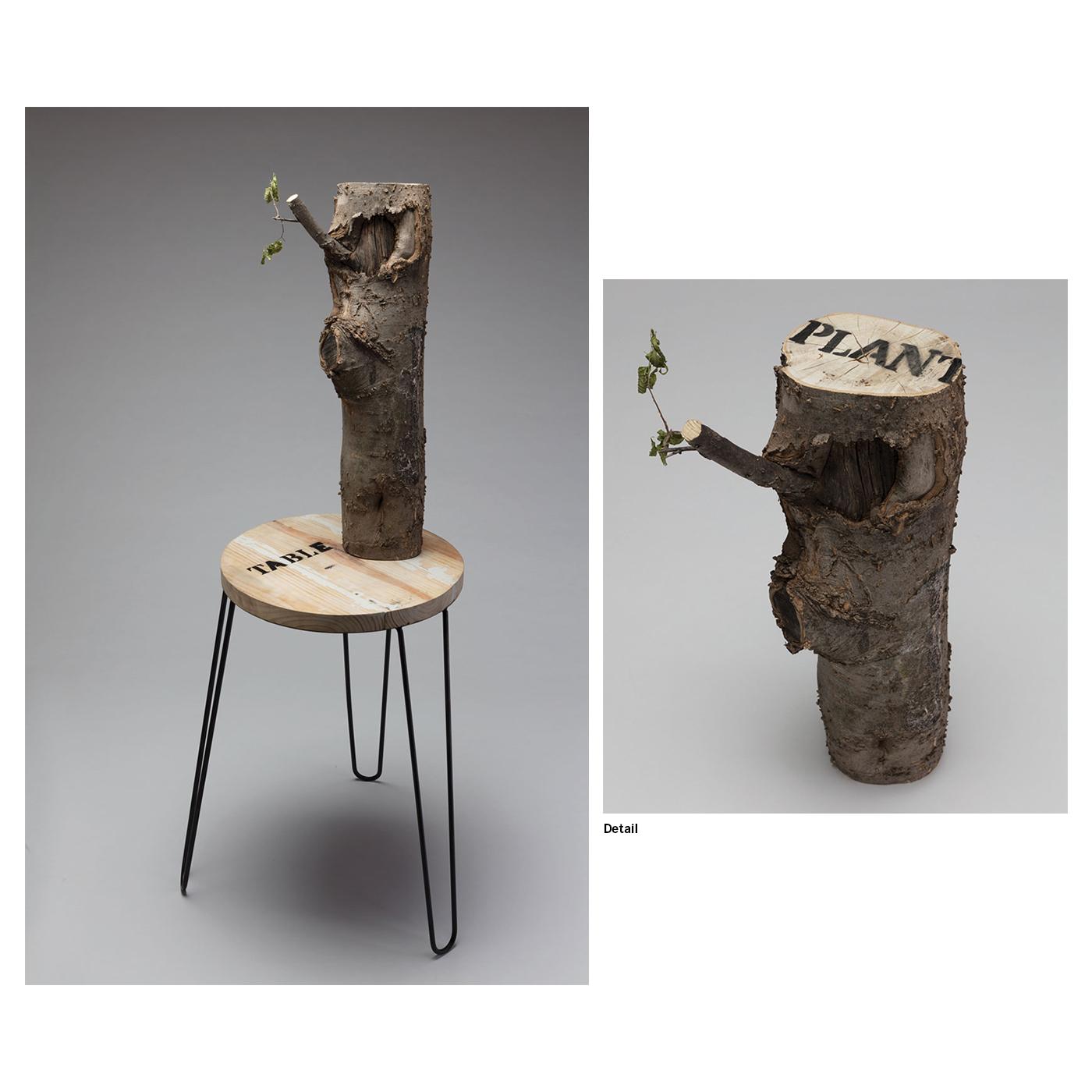 Luke Warren - Table and Plant