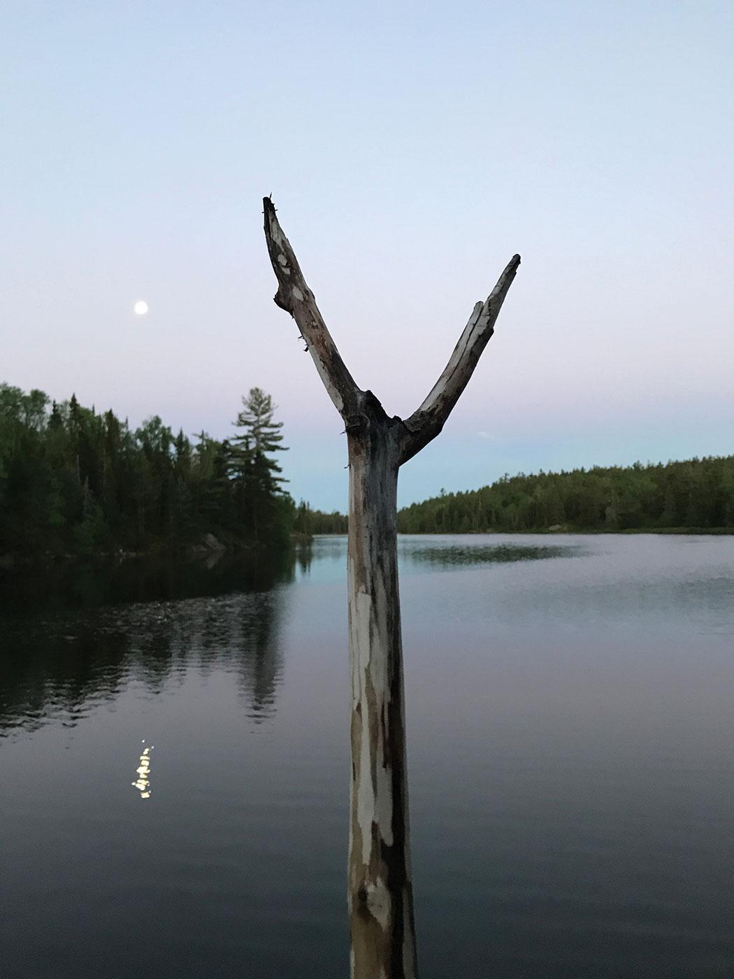 Jarvi Kononen   - Zenith Lake
