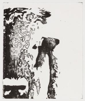 Hannah Brierty - Extinction (bison)