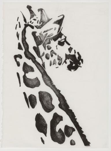 Hannah Brierty - Extinction (giraffe)
